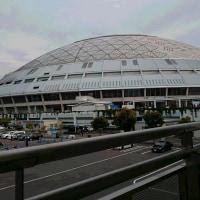 ナゴヤドーム開幕戦に行ってきました。