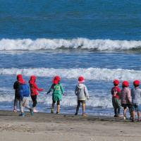 大堂津小の子ども達が砂浜にやって来ていました。 (Photo No.13840)