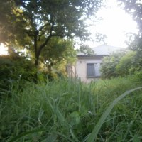 小さな草原の小さな家・・・