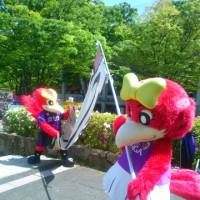 5/7 第12節 カマタマーレ讃岐戦 (京都・西京極競技場)