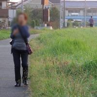 10月20日(木)鳥たち-名前知らず
