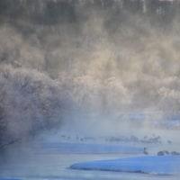 マイナス23℃の音羽橋。