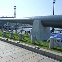 横須賀ランチ