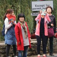 バイブリーの観光客達その22     投稿者:佐渡の翼