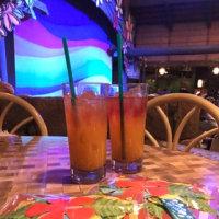 TDL ポリネシアンテラスレストラン レインボールアウ