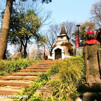 合格祈願絶えない「上野大仏」とパコダ様式の「祈願塔」