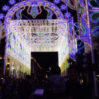 関西、冬の名物