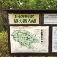おゆみ野地区緑の会議(旧円卓会議)