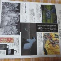 マリーン日記ー加山又造展も、映画エゴン・シーレも、白南風の会展もよかったね~。