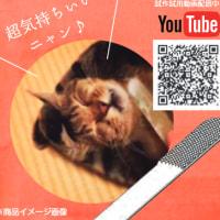 【WBS トレンドたまご】ねこじゃすり(仮) 2月7日放送
