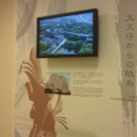 天空の白鷺 IN 姫路城