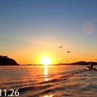 2016年11月26日(土) 漁業支援活動 in 江ノ島(女川町)