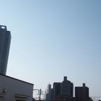 今朝(3月20日)の東京のお天気:晴れ、3月の温度統計、(3月の作品:花を持つ少女)