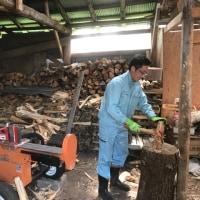 登り窯の薪割り助っ人   現る!