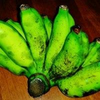 沖縄バナナは美味しい!