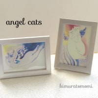 angel cats