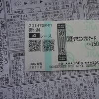 新潟競馬場観戦記③