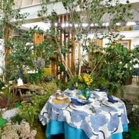 『テーブルウェア・フェスティバル2017~暮らしを彩る器展』