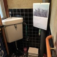 和式トイレから洋式トイレへ改修 2017.03.