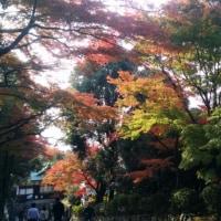 犬山散策&ランチ