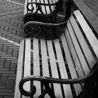 公園のベンチに似合う人