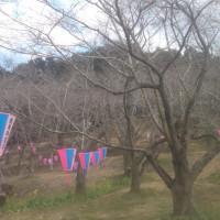 滞在型家庭菜園:鶴舞公園