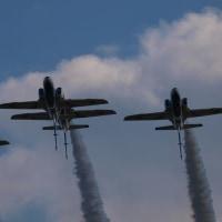 入間航空祭 ブルーインパルス背面