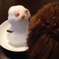 雪は 美味しい?