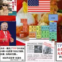 ~蛍の光TPP~日本閉店の時間