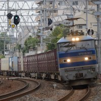 EF510 505牽引2080レ(6月20日撮影)