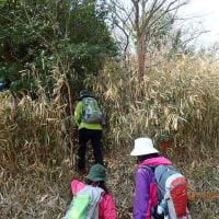 里山仲間と里山・火の山(246,9m)縦走~(H・29・3・12)