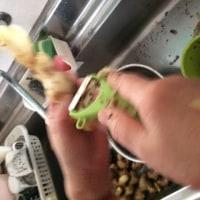 生姜の加工をしました