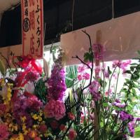 【千葉ラーメン新店】「麺や ふくろう@馬橋」千葉県内や埼玉のラーメン店の店長を歴任した、経験豊富な青木忍さんが独立開業