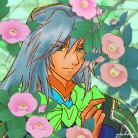 薄桃色の花影