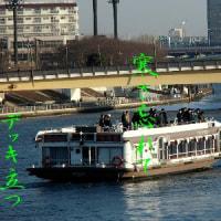 3460・観光船