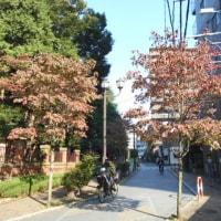 社民党埼玉県連合の会議へ出席