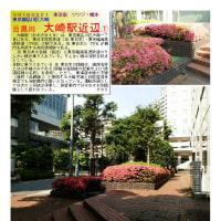 散策 「東京中心部南 252」 目黒川 大崎駅近辺①