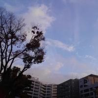 今日の私は753 【12月5日の博多の朝です】