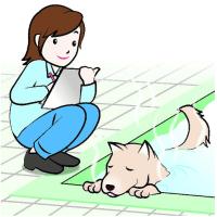 今日以降使えるダジャレ『2206』【科学】■犬も温泉治療で効能?臨床試験で医学的裏付けへ