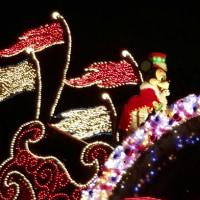 """""""エレクトリカルパレード""""クリスマスバージョン、やっと観てきました"""