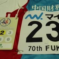 明日は、どんなレースになるのだろうか?