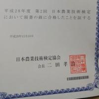 日本農業技術検定3級に合格しました!