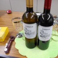 La Lingua la Vitaの「メソポタミア期のトーディ: ワインの歴史とイタリアの芸術について」に行ってきました(2016.11.15)@日伊学院