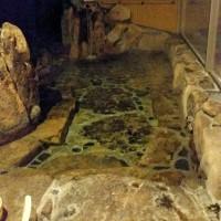 ラドン温泉。