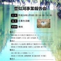 豊似湖の観光振興・環境調査など報告会のお知らせ
