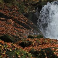 11月27日 増水の滝