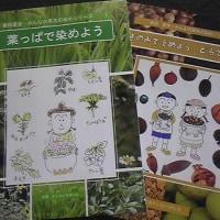 店休日変更】3/26(日)→29(水)