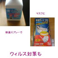 風邪予防、ウイルス対策も。