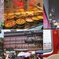 上海旅(3)