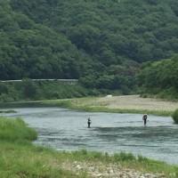 梅雨の勝浦川